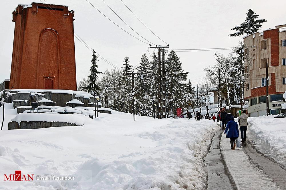 برف لاهیجان 2 - یک روز پس از بارش برف سنگین در لاهیجان / گزارش تصویری