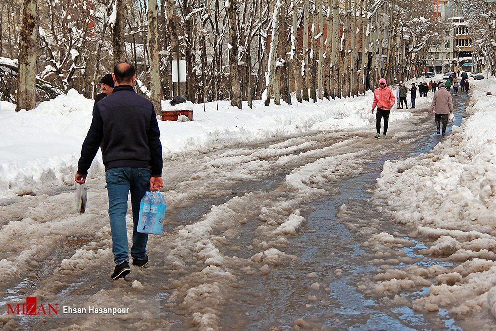 برف لاهیجان 4 - یک روز پس از بارش برف سنگین در لاهیجان / گزارش تصویری