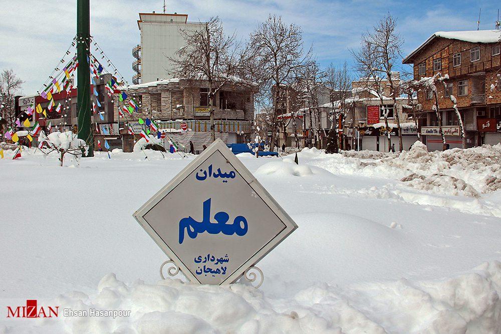برف لاهیجان 5 - یک روز پس از بارش برف سنگین در لاهیجان / گزارش تصویری
