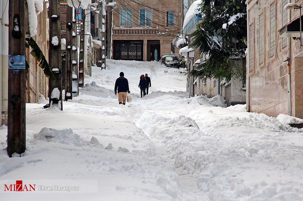 برف لاهیجان 6 - یک روز پس از بارش برف سنگین در لاهیجان / گزارش تصویری