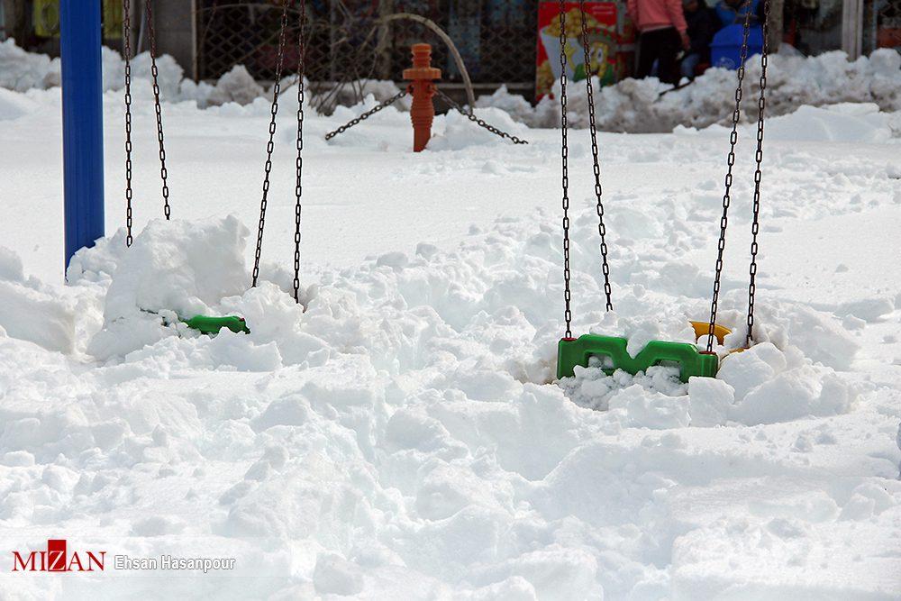 برف لاهیجان 7 - یک روز پس از بارش برف سنگین در لاهیجان / گزارش تصویری