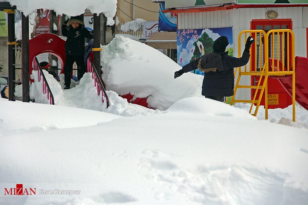 برف لاهیجان 8 - یک روز پس از بارش برف سنگین در لاهیجان / گزارش تصویری