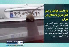 بازداشت عوامل ویدئو های باران بادمجان در تهران