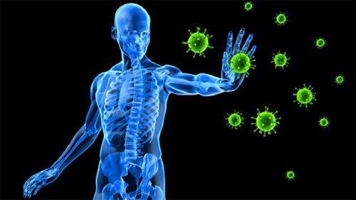 ایمنی بدن 500x281 - ۵ روش ساده و سریع برای بالا بردن ایمنی بدن