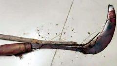 تصویری از داس پدر رومینا اشرفی که دخترش را با آن کشت