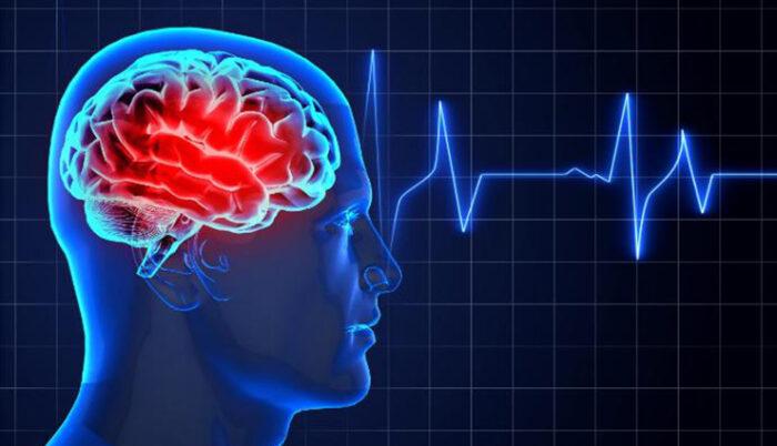 اعصاب مغز 700x402 - خوراکی هایی که اعصاب و روانتان را بهم می ریزد