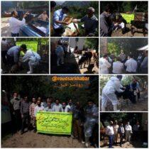 برگزاری اردوی جهادی و کلینیک تخصصی دامپزشکی در منطقه اشکور علیا شهرستان رودسر