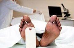 درمان ١٤٠ بیمار با استفاده از بافت یک جسد