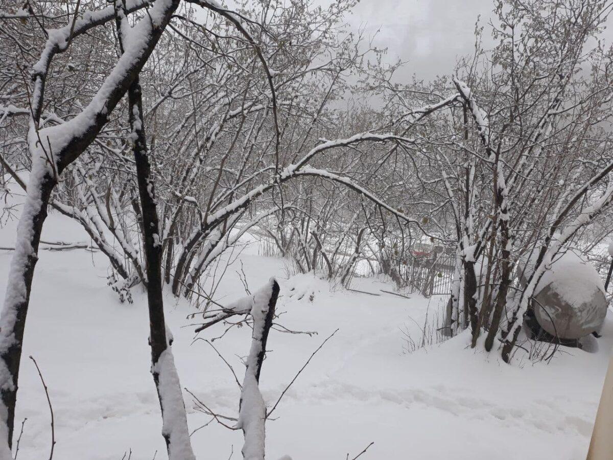 تصاویری از بارش برف در روستای لشکان 9 scaled - تصاویری از بارش برف در روستای لشکان
