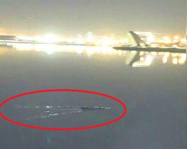 تمساح احتمالی دریاچه چیتگر 1 624x500 - تمساح احتمالی دریاچه چیتگر پیدا شد+ عکس