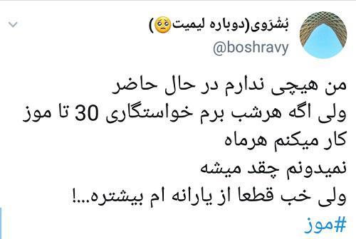 واکنش کاربران توئیتری به قیمت نجومیِ موز 7 - واکنش کاربران توئیتری به قیمت نجومیِ موز / طرح تعویض یارانه با یک کیلو موز!