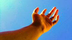 آیا انسان قادر به بازسازی عضو از دست رفته است؟!