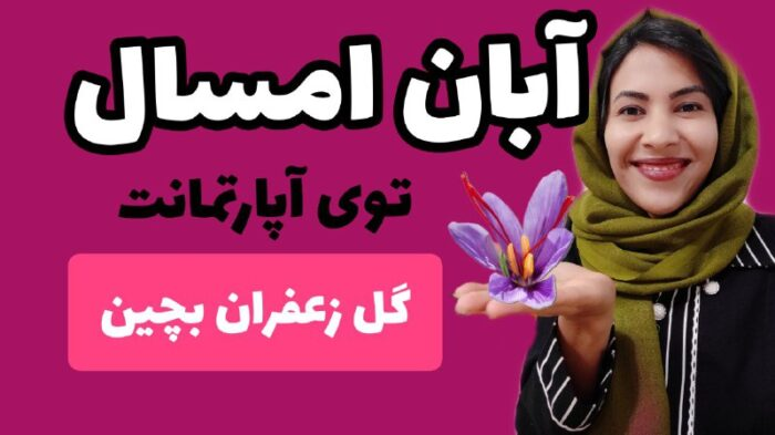 1 1 700x393 - آموزش صفر تا صد کاشت زعفران در منزل