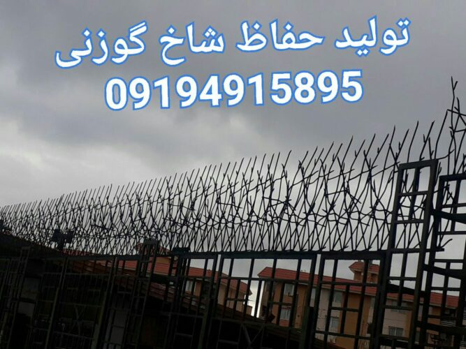 a9095f95bd6b3d669913178742d3e4a4 667x500 - حفاظ ساختمان