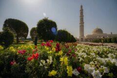 آنچه باید درباره کشور عمان بدانید