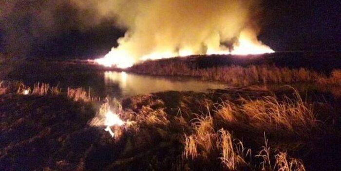 آتش سوزی تالاب 700x352 - بعد از تالاب انزلی نوبت به پارک ملی بوجاق رسید/ ایجاد حریق در ۷ هکتار از پارک ملی بوجاق