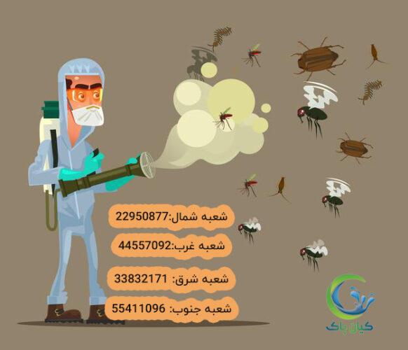 111 2 582x500 - حشرات کوچک ترین عاملان بیماری
